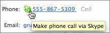 Skype integration in the Joyent address book.