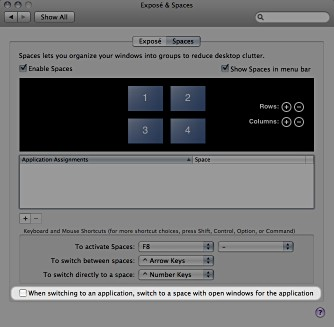 Screenshot of Spaces prefs panel in Mac OS X 10.5.3.