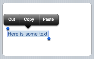 Screenshot of Cut/Copy/Paste menu in iPhone OS 3.0.